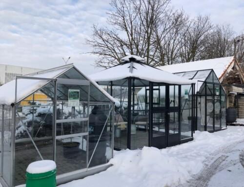Zimowa ekspozycja…w AGROCENTRUM w Kielcach